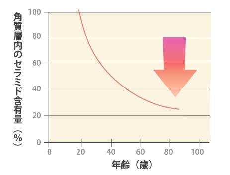 セラミドの減少グラフ