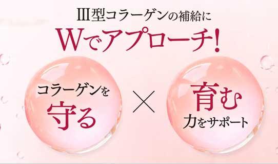 卵殻膜エキス Ⅲ型コラーゲンを守り、育む