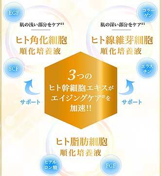 3種のヒト肝細胞培養液